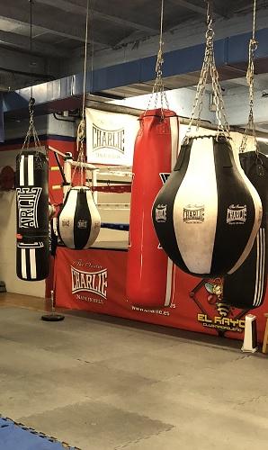 Saco de boxeo blanco y negro